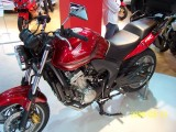 Honda CBF 600 by Angel