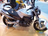 Honda Hornet 900 by Angel